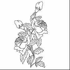 breathtaking roses coloring pages dokardokarz net