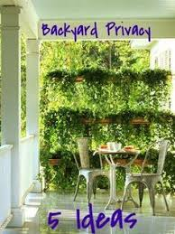 Small Backyard Landscaping Ideas For Privacy Front Yard Privacy Landscaping Ideas