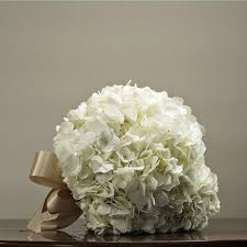 wedding flowers ottawa wedding flower package white hydrangea bouquets orchid