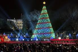 christmas tree lighting near me after the national christmas tree lighting festivities continue