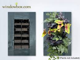 indoor vertical garden kit indoor living wall kit with rustic
