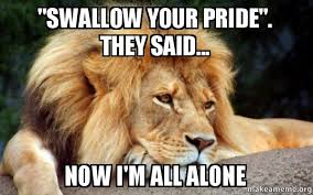 All Alone Meme - swallow your pride they said now i m all alone magnet s