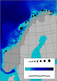 Arctic Circle Map Uncovering The Secrets Of Arctic Seabird Colonies