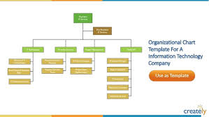 organizational chart templates by creately