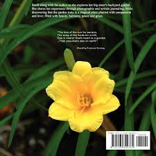 my sister u0027s garden abigail eden 9781105849381 amazon com books
