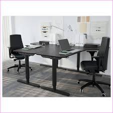 Office Desk Ikea Unique Ikea Office Desk Fice Desk Modern Fice Desk Ikea 2 Person