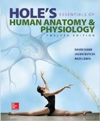 Human Anatomy And Physiology Marieb Hoehn Pearson International Edition Human Anatomy And Physiology Eighth