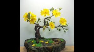 abc tv how to make artificial bonsai tree craft tutorial