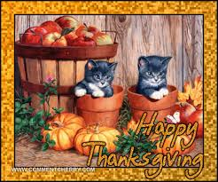 happy thanksgiving cats cool graphic