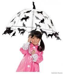 Dog Halloween Costumes Girls 14 Weather Costume Ideas Images Halloween