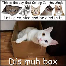 Ceiling Cat Meme - let us rejoice and be glad in it lolcats lol cat memes