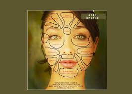 Face Mapping Acne Skin Speaks In Health Matters I Was Amazed When My Doctor Asked