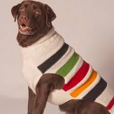 preppy striped handmade chilly sweaters for dogs