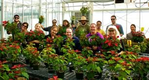 poinsettias for sale at cuyamaca college