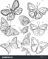 outline butterfly silhouettes stock vector 119247115 shutterstock