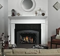 Direct Vent Fireplace Insert by Innsbrook Luxury Traditional Direct Vent Fireplace Insert