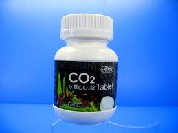 Tablet Co2 Ista Co2 Tablet Carbon Dioxide 100 Tab Carbon Dioxide