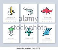 menu seafood vector template brochure or flyer restaurant and