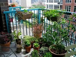 balcony balcony herb garden australia best balcony herb garden ideas