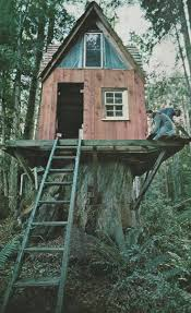 Treehouse Community by 190 Best Tree Houses Images On Pinterest Treehouses