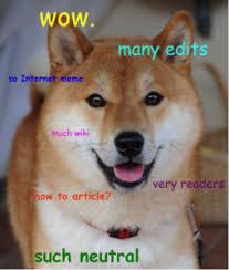 how to speak doge scientific scribbles
