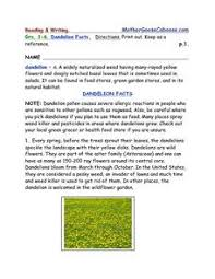 Dandelion Facts Dandelion Facts Reading And Writing Worksheet Packet 4th 7th