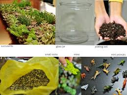quiet like horses how to make your own terrarium