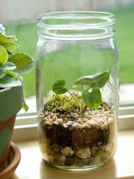 Mason Jar Wall Planter by Mason Jars And Bottles Diy Decors U2013 Christina Rogan Nyc