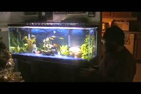 marineland bright led lighting system