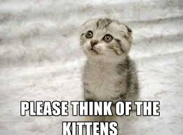 Cute Kittens Memes - 20 cute cat memes that will put you in a good mood sayingimages com