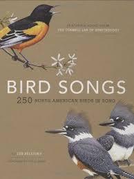 Backyard Song Backyard Birding Bird Songs 250 North American Birds In Song By