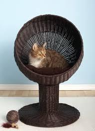 Wicker Beds The Refined Feline Kitty Ball Luxury Wicker Cat Bed 1800petmeds