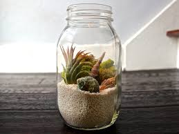 desk terrarium kit best home furniture decoration