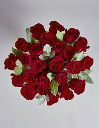 valentines roses the collection two dozen freedom s roses m s