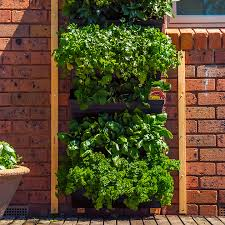 wall garden vertical gardening systems
