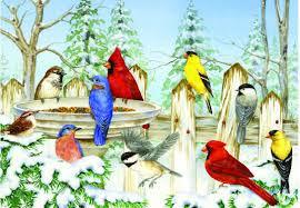 audubon card center audubon