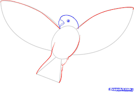 how to draw a simple flying bird