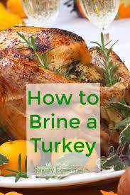 thanksgiving cooking recipes how to brine a turkey savory experiments