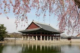 where to buy a photo album kpop album lightsticks and merch where to buy seoul forum