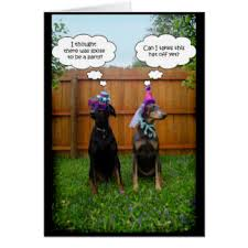 doberman birthday greeting cards zazzle