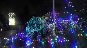 Zoo Lights Jacksonville by San Jose Christmas Lights Christmas Lights Decoration