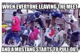 Ford Mustang Memes - the internet hates the ford mustang jalopnik