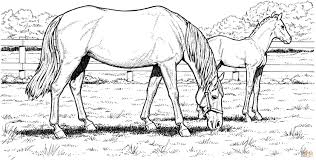 free horse coloring pages download