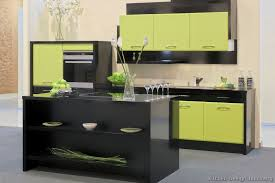 Modern Green Kitchen Cabinets Modern Kitchen With Green Cabinets Home Designing