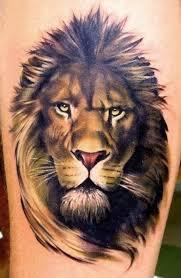 the best lion tattoos lion publications