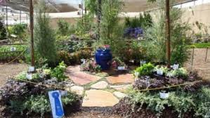 Blue Ribbon Landscaping by Photos