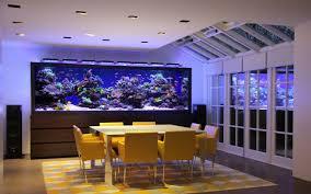 Home Aquarium The Art Of The Planted Aquarium A Wordpress Site
