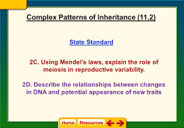 state standard 2c using mendel u0027s laws explain the role of