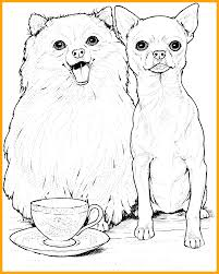 coloring pages chihuahua puppies chihuahua puppy coloring page animal coloring pages
