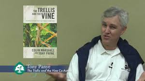 what is the trellis and the vine about author tony payne answers